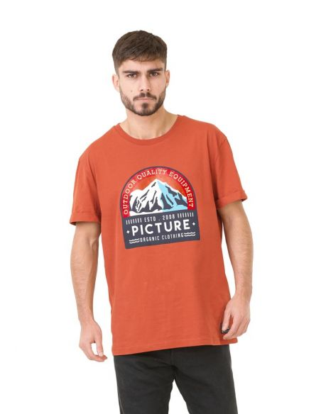 tee shirt homme picture marron Earth
