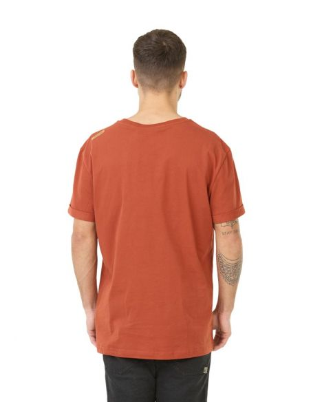 tee shirt picture marron Earth