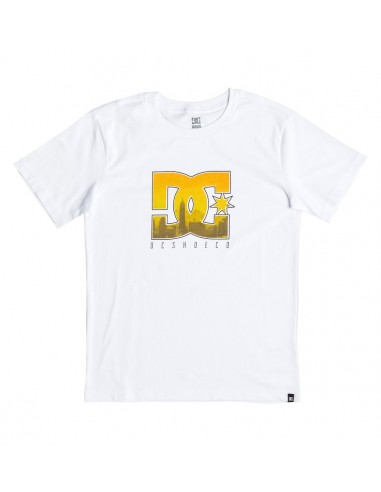 tee-shirt enfant DC Big city ss boy blanc